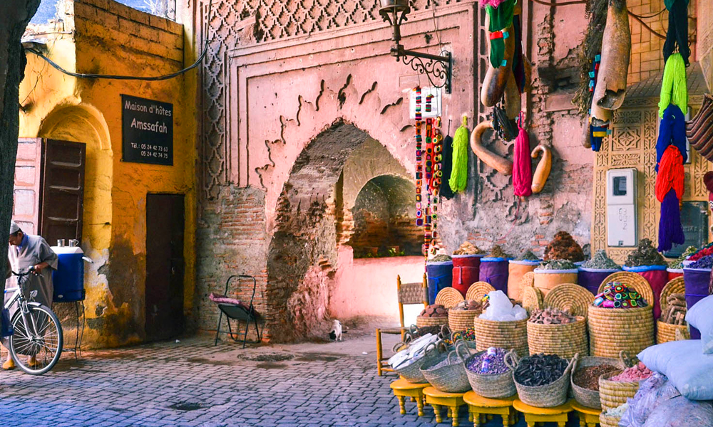 Sightseeing guided tour of marrakech in private